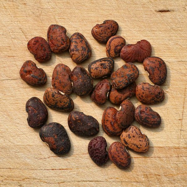 Jackson Wonder Butterbean Seeds