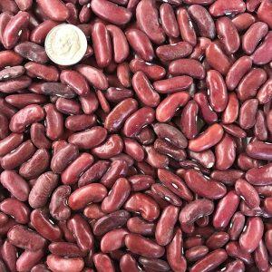 Dark Red Kidney Bean Seeds