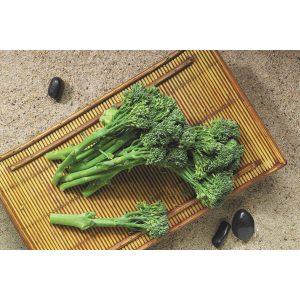 Aspabroc F1 Hybrid Baby Broccoli