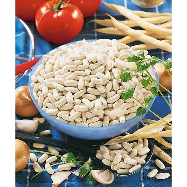Certified Organic Cannellini/Cannellone Bean Seeds