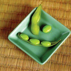 Midori Giant Bean Seeds