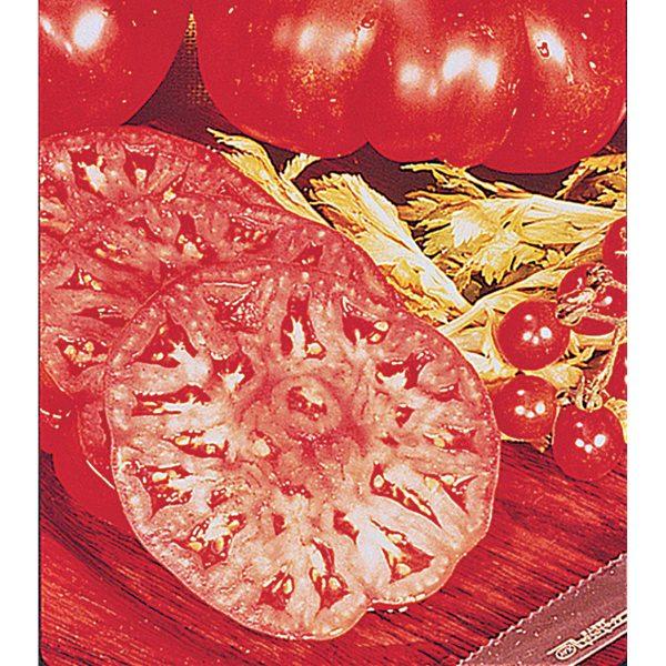 Beefmaster VFN F1 Hybrid Beefsteak Tomato
