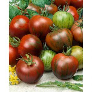 Black Zebra Tomato