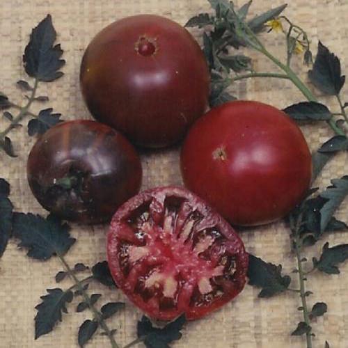 Black Krim Heirloom Tomato