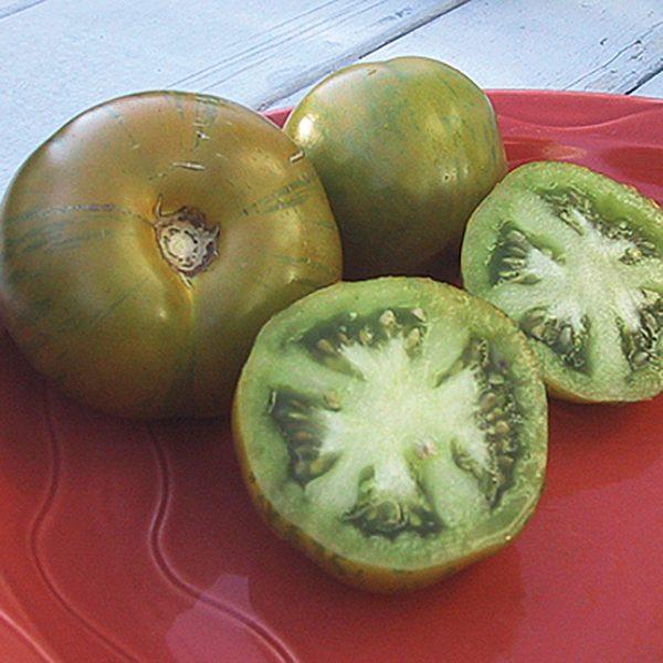 Green Zebra Heirloom Tomato