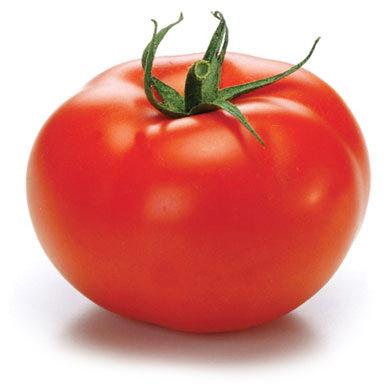 Geronimo F1 Hybrid Tomato Seeds