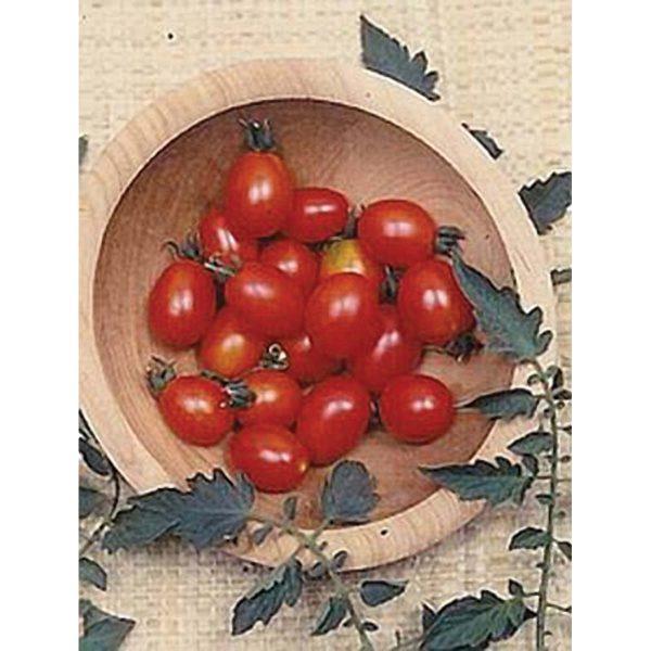 Principe Borghese Italian Cherry Tomato