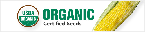 Organic Certified Seeds