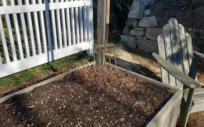 Putting the Vegetable Garden to Bed