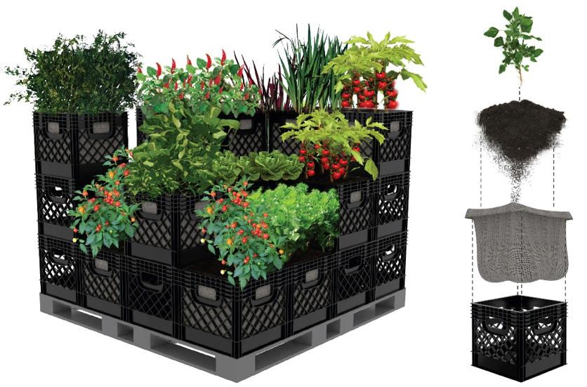 Square-Foot Garden in Milk Crates!